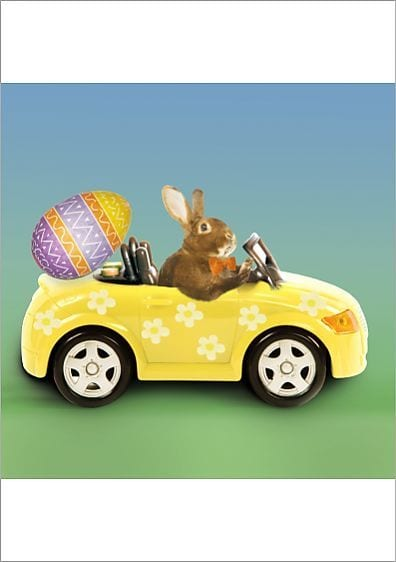 Easter Special Offer - Driving Ayrshire